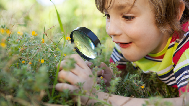tes-resources-outdoor-learning